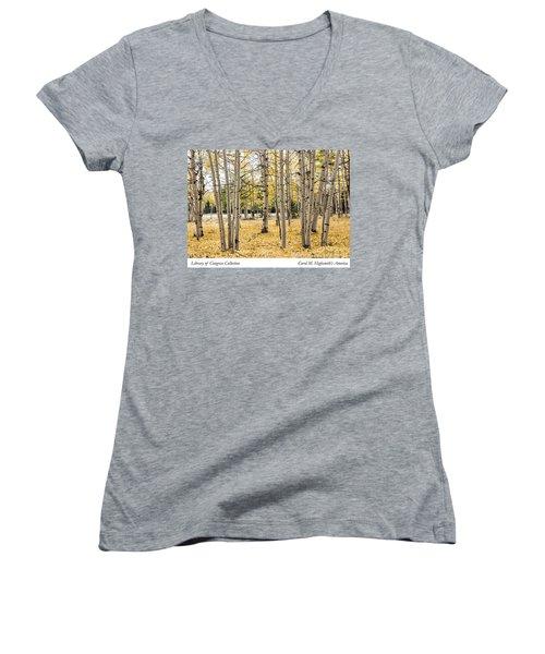 Aspens In Conejos County In Colorado, Near The New Mexico Border Women's V-Neck T-Shirt