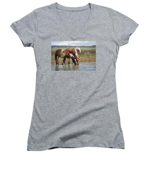 Assateague Ponies Tale Drink Women's V-Neck T-Shirt