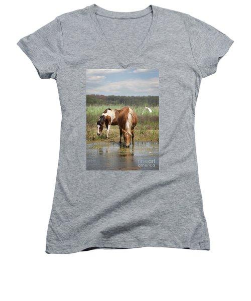 Assateague Pony Pair Women's V-Neck T-Shirt