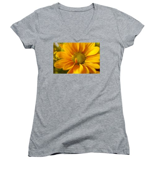 Aster Close Up Women's V-Neck T-Shirt (Junior Cut) by Andrew Soundarajan