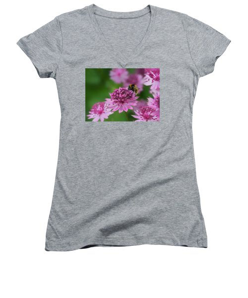 Pollination Women's V-Neck T-Shirt (Junior Cut) by Shirley Mitchell