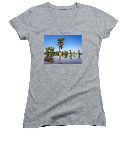Atchafalaya Cypress Tree Women's V-Neck (Athletic Fit)