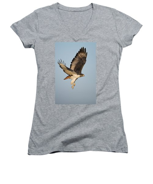 Augur Buzzard Buteo Augur Flying Women's V-Neck T-Shirt (Junior Cut) by Panoramic Images