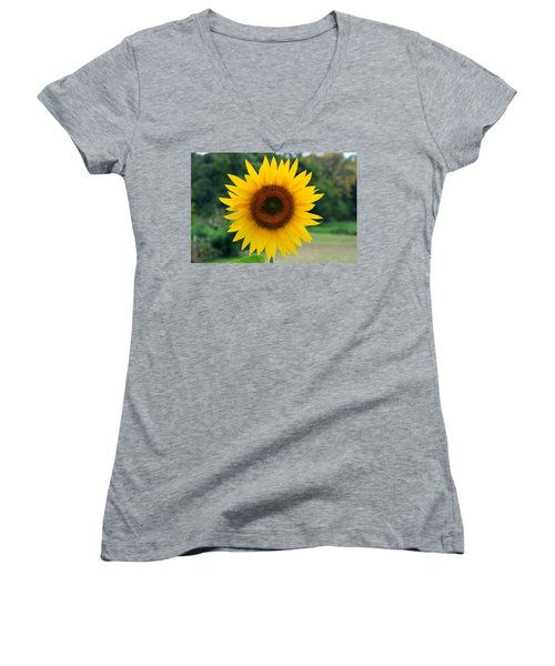 August Sunflower Women's V-Neck (Athletic Fit)