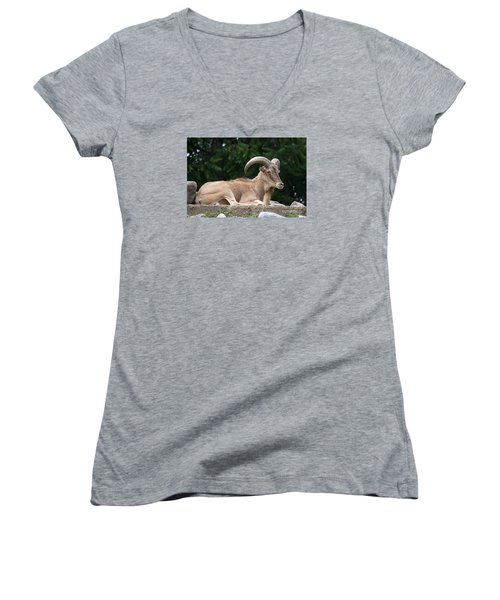 Women's V-Neck T-Shirt (Junior Cut) featuring the photograph Auodad 20120714_80a by Tina Hopkins