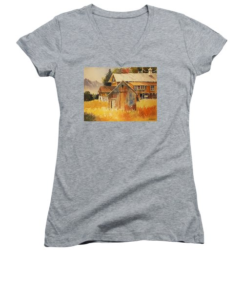Autumn Barn And Sheds Women's V-Neck T-Shirt (Junior Cut) by Al Brown