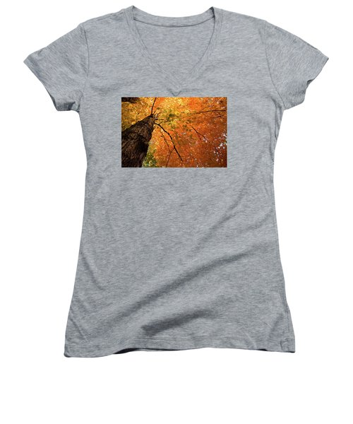 Autumn Canopy In Maine Women's V-Neck