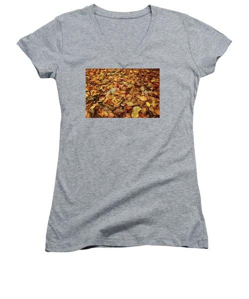 Autumn Carpet Women's V-Neck T-Shirt (Junior Cut) by Vittorio Chiampan