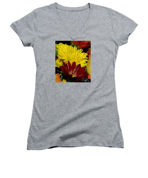 Women's V-Neck T-Shirt (Junior Cut) featuring the photograph Autumn Colors by Patricia Griffin Brett