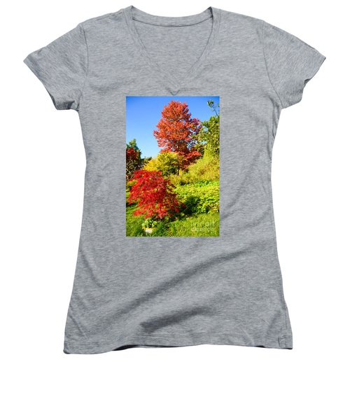 Autumn Colours Women's V-Neck T-Shirt (Junior Cut) by Colin Rayner