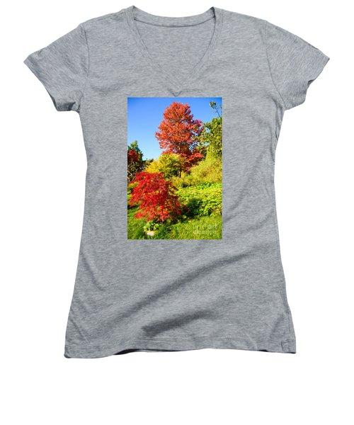 Autumn Colours Women's V-Neck