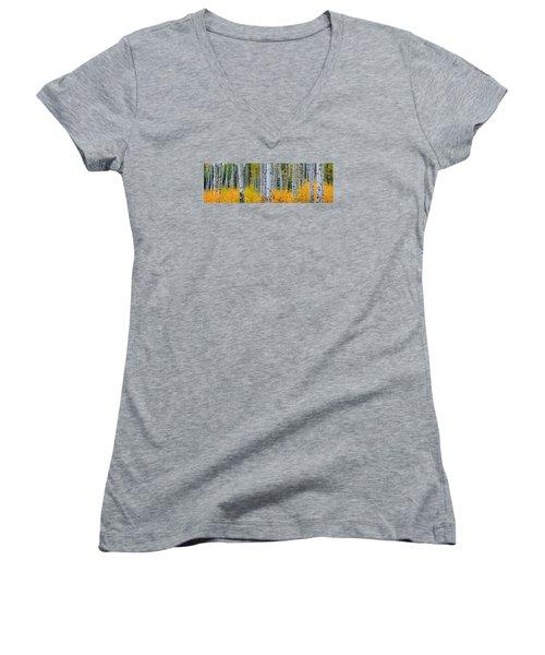 Autumn Dance Women's V-Neck T-Shirt