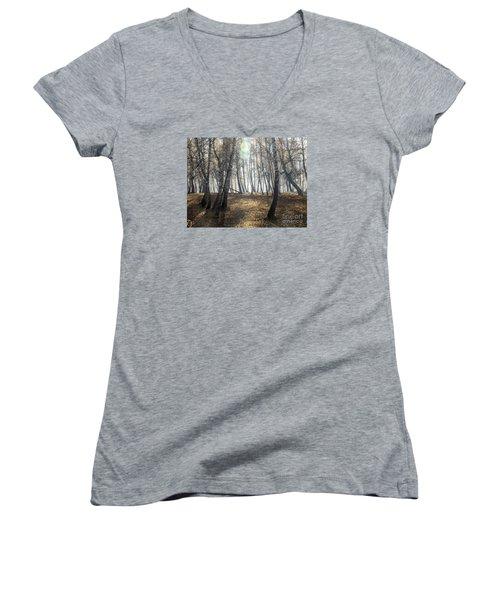 Autumn Deep Fog In The Morning Birch Grove Women's V-Neck T-Shirt (Junior Cut) by Odon Czintos