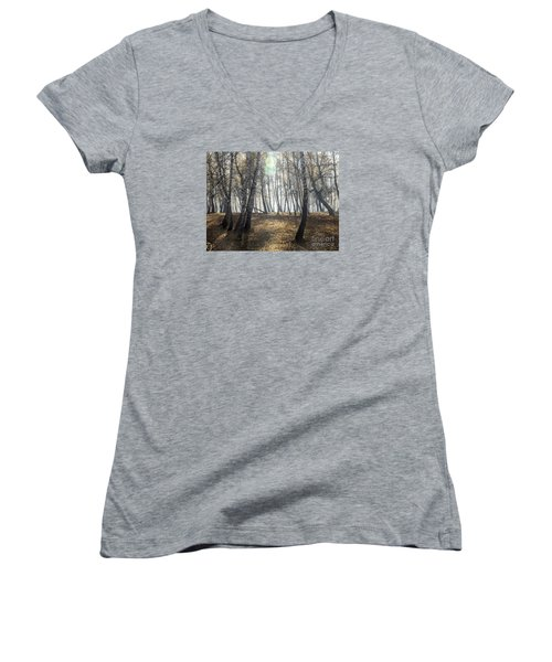 Autumn Deep Fog In The Morning Birch Grove Women's V-Neck T-Shirt