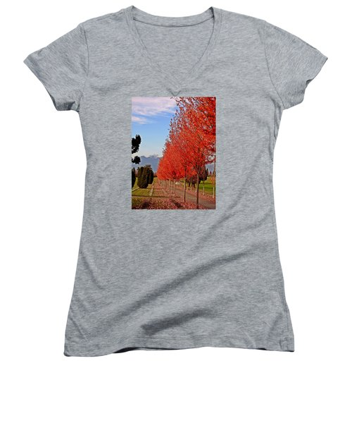 Autumn Delight, Vancouver Women's V-Neck T-Shirt (Junior Cut) by Brian Chase