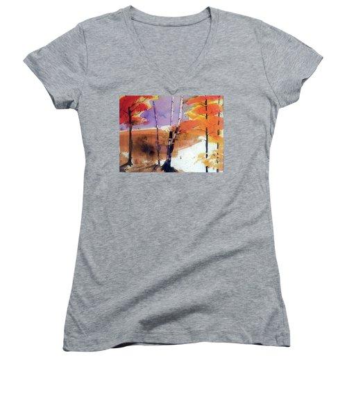 Autumn Women's V-Neck T-Shirt (Junior Cut) by Ed Heaton