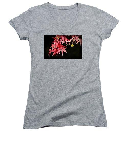 Women's V-Neck T-Shirt featuring the photograph Autumn Fire by AJ Schibig