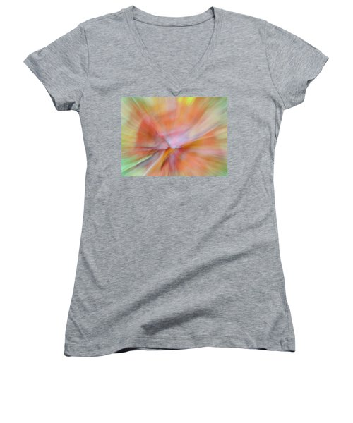 Autumn Foliage 13 Women's V-Neck