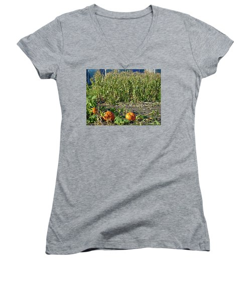 Autumn Harvest Women's V-Neck T-Shirt