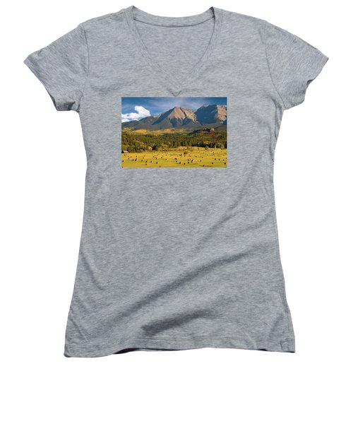 Autumn Hay In The Rockies Women's V-Neck T-Shirt (Junior Cut) by Steve Stuller