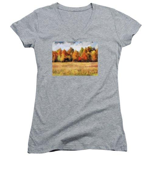 Autumn Impression 1 Women's V-Neck T-Shirt