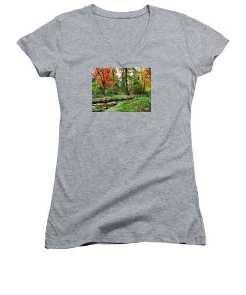 Autumn In Bloom Women's V-Neck T-Shirt (Junior Cut)