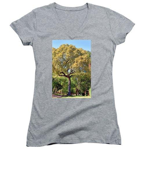 Autumn In Summer Women's V-Neck T-Shirt (Junior Cut) by Joan Bertucci