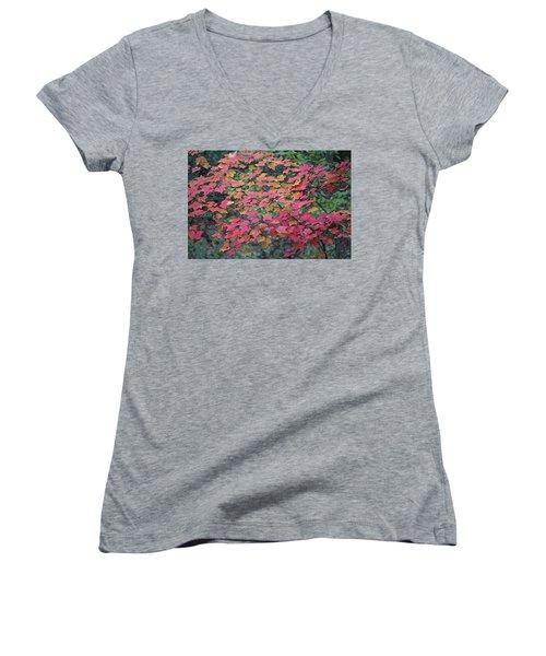 Autumn Leaves Women's V-Neck T-Shirt