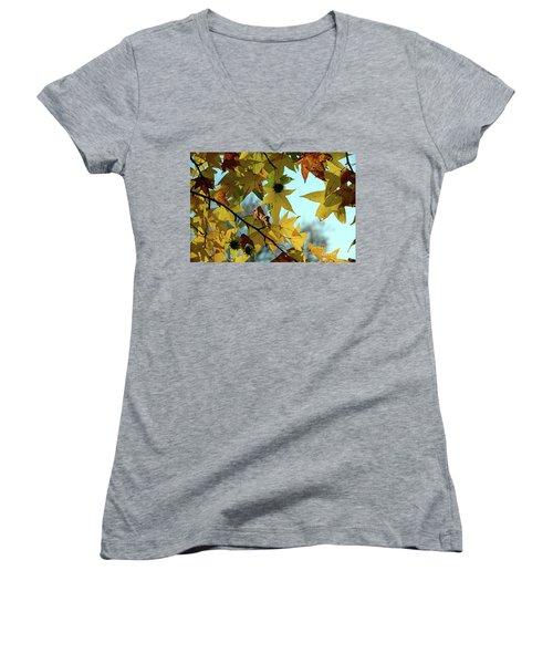 Autumn Leaves Women's V-Neck T-Shirt (Junior Cut) by Joanne Coyle