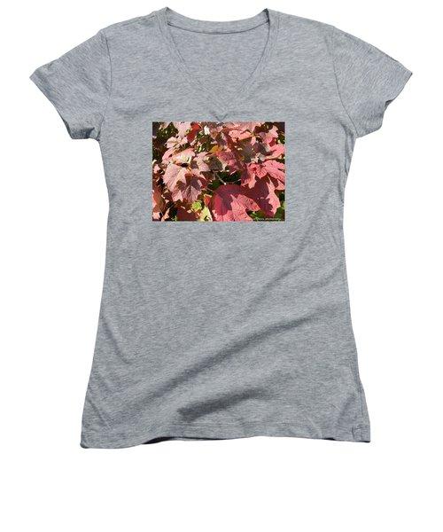 Autumn Leaves Women's V-Neck T-Shirt (Junior Cut) by Nance Larson