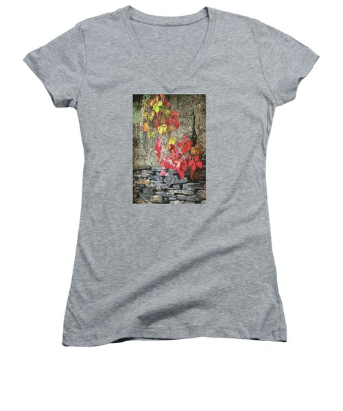 Women's V-Neck T-Shirt (Junior Cut) featuring the photograph Autumn Leaves by Tom Singleton