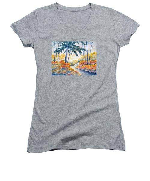 Autumn Mist Women's V-Neck T-Shirt (Junior Cut) by Carolyn Rosenberger