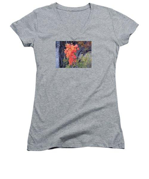 Autumn Oak Leaves Women's V-Neck T-Shirt (Junior Cut) by Deborah Moen