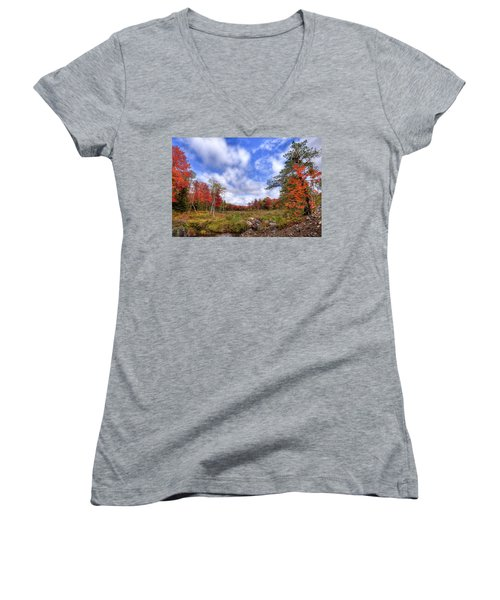 Women's V-Neck T-Shirt (Junior Cut) featuring the photograph Autumn On The Stream by David Patterson