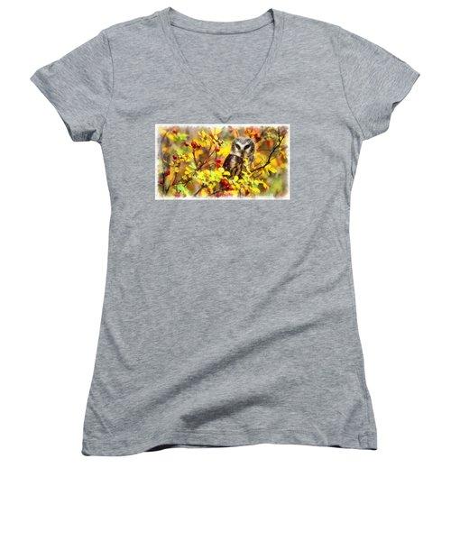 Autumn Owl Women's V-Neck T-Shirt