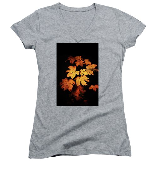 Autumn Photo Women's V-Neck (Athletic Fit)