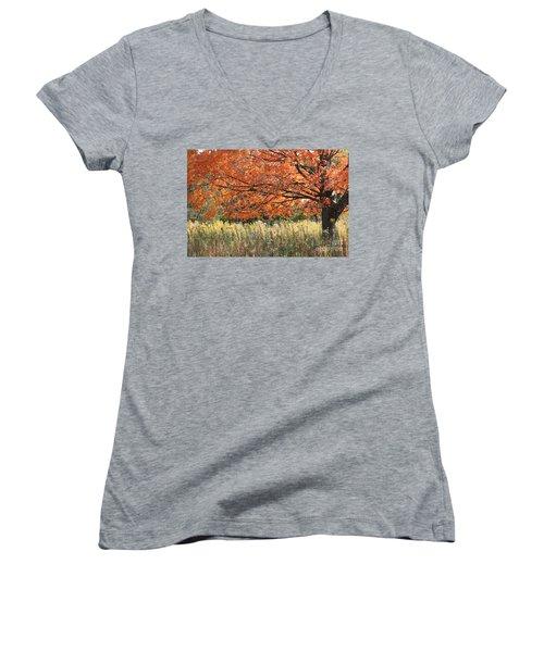 Women's V-Neck T-Shirt (Junior Cut) featuring the photograph Autumn Red   by Paula Guttilla