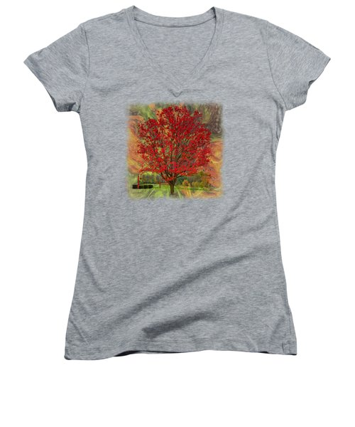 Autumn Scenic 2 Women's V-Neck T-Shirt (Junior Cut) by John M Bailey