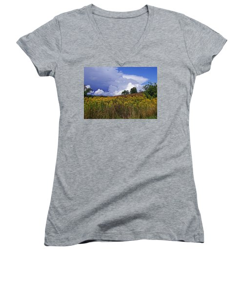 Autumn Skies Women's V-Neck (Athletic Fit)