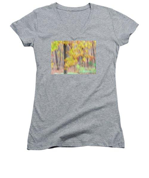 Autumn Splendor Women's V-Neck T-Shirt (Junior Cut) by Bernhart Hochleitner