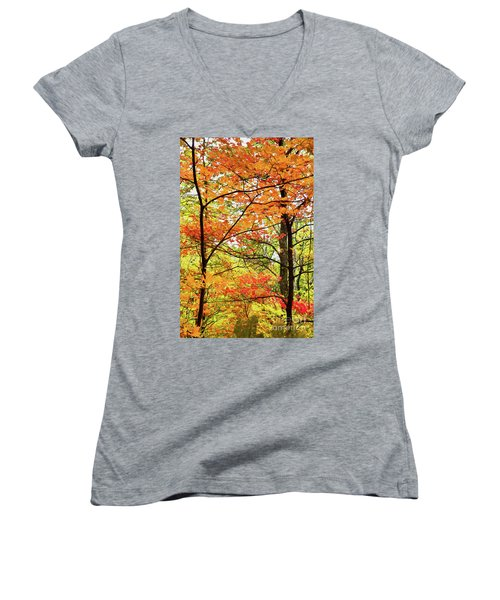 Autumn Splendor Fall Colors Leaves And Trees Ap Women's V-Neck T-Shirt (Junior Cut) by Dan Carmichael