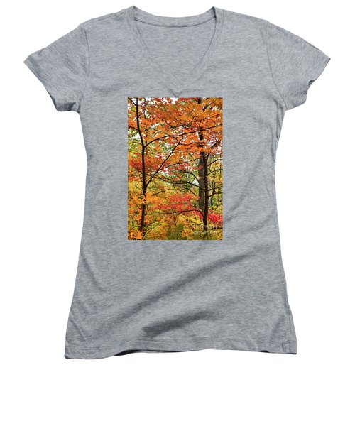 Autumn Splendor Fall Colors Leaves And Trees Women's V-Neck T-Shirt (Junior Cut) by Dan Carmichael