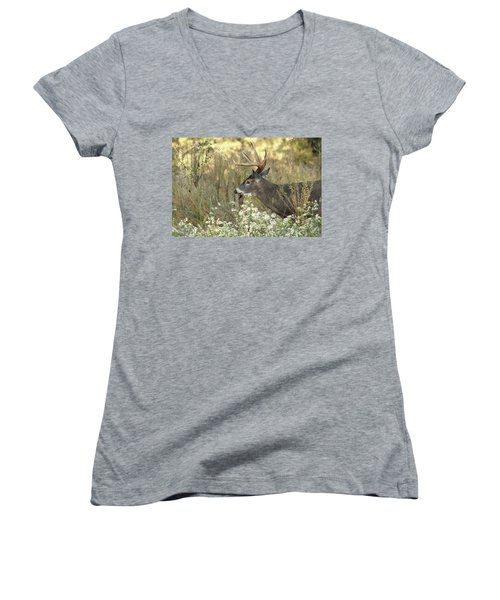 Autumn Whitetail In The Smokies Women's V-Neck T-Shirt (Junior Cut) by TnBackroadsPhotos