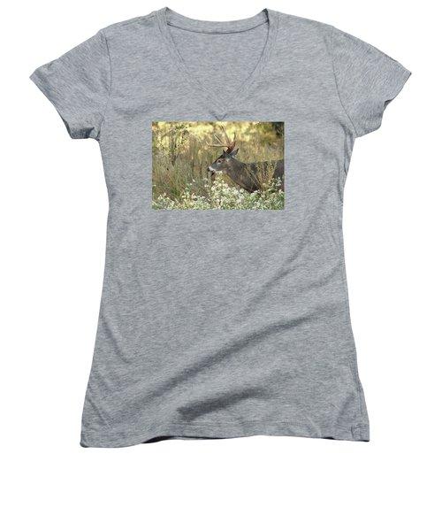 Autumn Whitetail In The Smokies Women's V-Neck T-Shirt