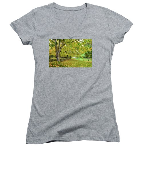 Autumn Wonderland Women's V-Neck T-Shirt