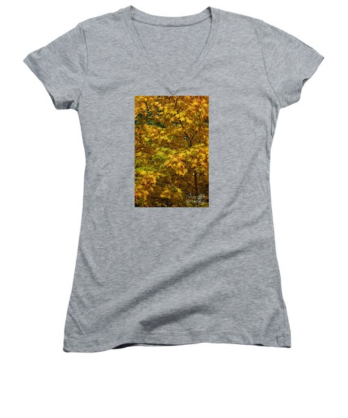 Autumnal Leaves And Trees 2 Women's V-Neck