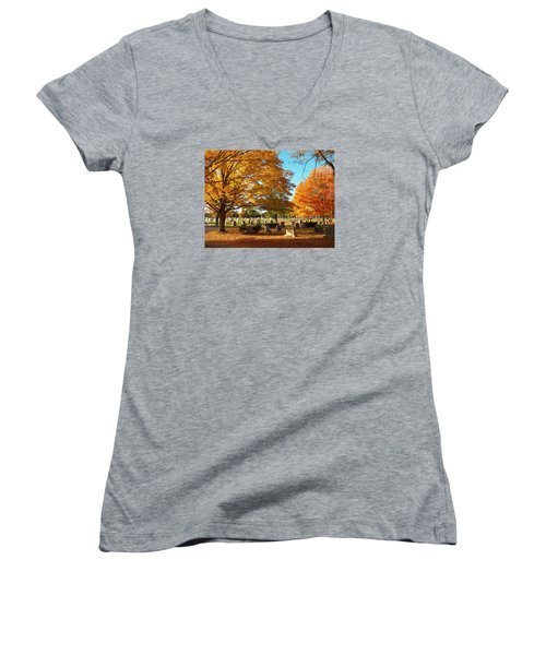 Awaiting Winter's Chill Women's V-Neck T-Shirt