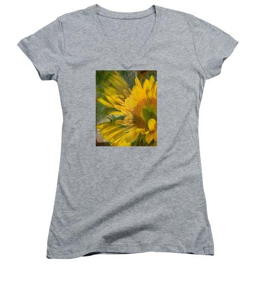 Awash In Sun Women's V-Neck T-Shirt (Junior Cut) by Arlene Carmel