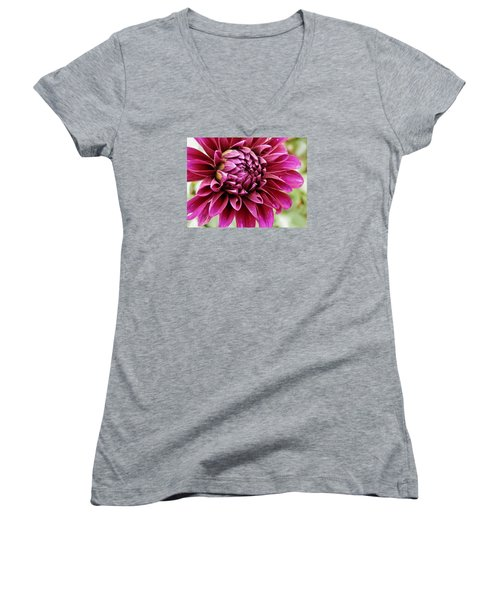 Awesome Dahlia Women's V-Neck T-Shirt (Junior Cut) by VLee Watson