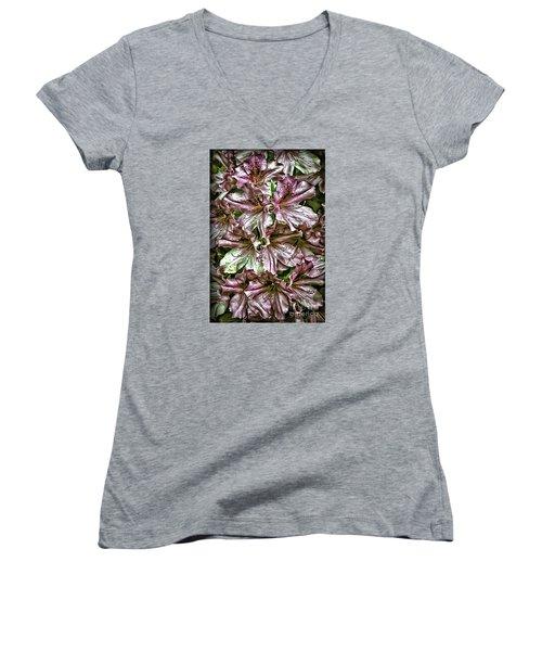 Azaleas Women's V-Neck T-Shirt (Junior Cut) by Walt Foegelle